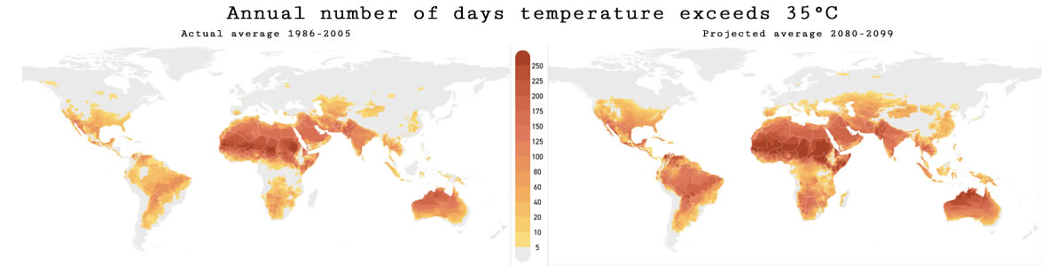Day count over 35 degrees - actual and projected. Image credit: Climate Impact Lab.