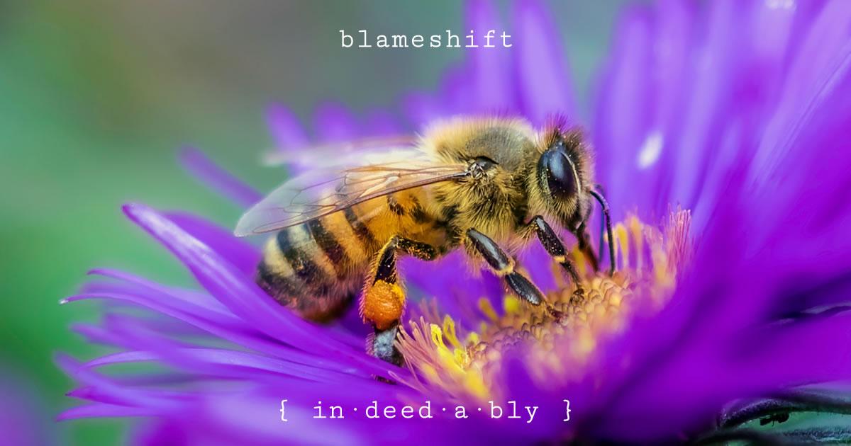 Blameshift. Image credit: Dustin Humes.