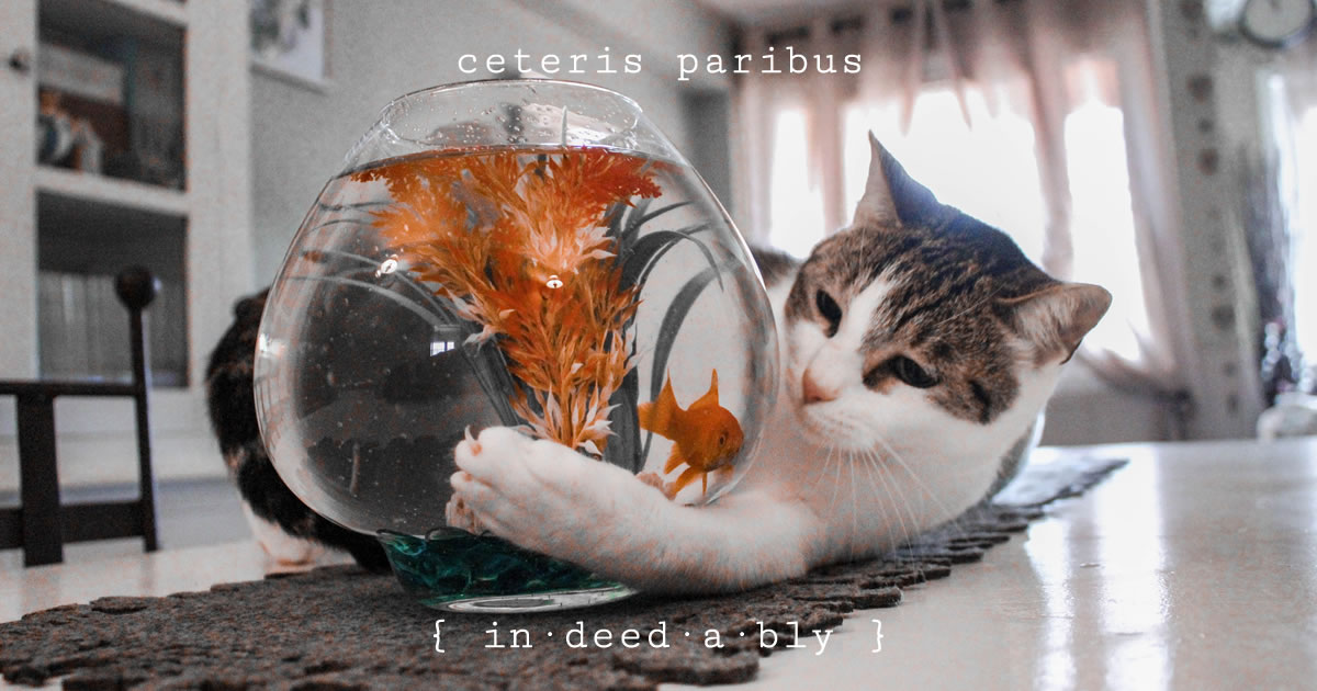 Ceteris paribus. Image credit: Hannah Reding.