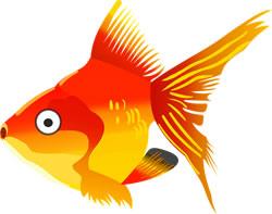 Gold fish. Image credit: OpenClipart-Vectors.