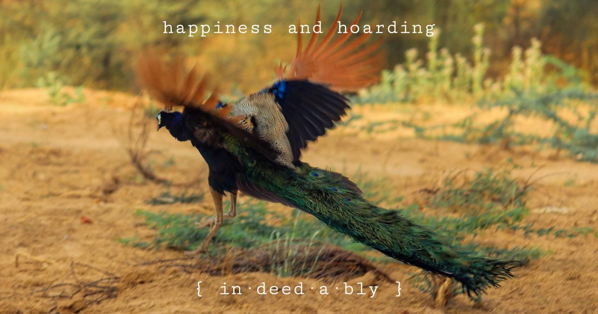 Happiness and hoarding. Image credit: Karthik Easvur.