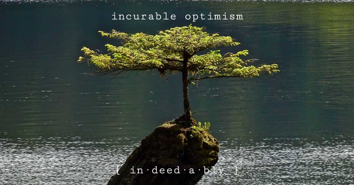 Incurable optimism. Image credit: pxhere.