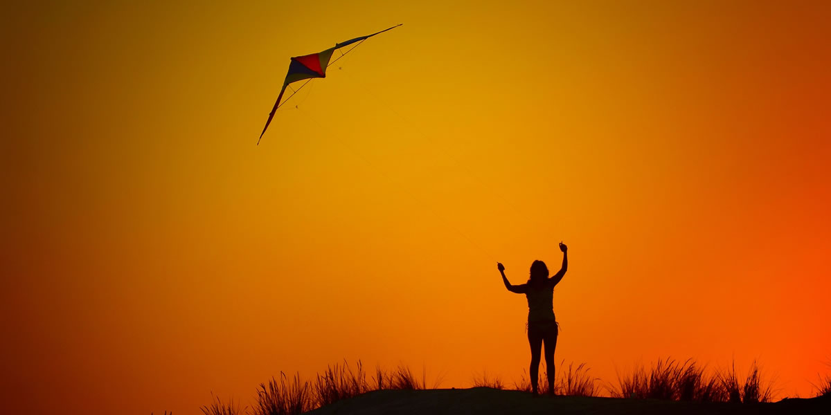Kite. Image credit: Conquero.