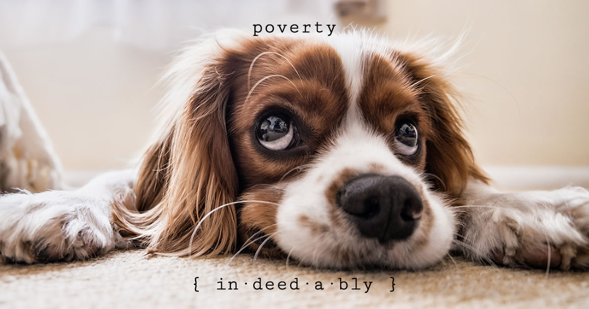 Poverty. Image credit: Fran.