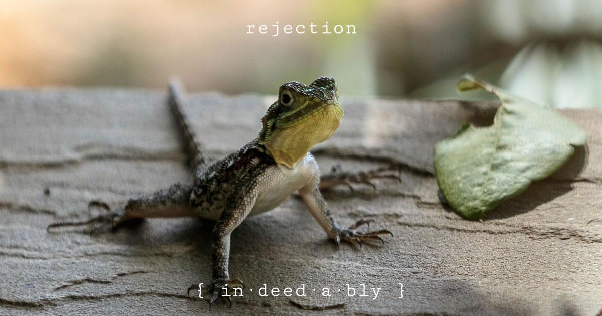 Rejection. Image credit: herbert2512.